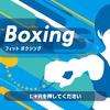 Fit Boxing フィットボクシング(1)