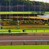 【カペラステークス 2019予想】過去のレース傾向分析&各馬評価まとめ / 6頭出走のながつきS組も当然重要だが、それよりも同数出走のアレに注目したい一戦