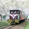 第114話 1988年津軽 北国の春(その3)