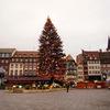 クリスマスツリー発祥の地・アルザス地方ストラスブールのクリスマスマーケット【フランス観光おすすめ情報】