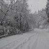2016年01月18日(月)春かと思ったら大雪