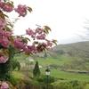 春の欧州⑥ 山バスクの村々2 アイノア、サールとその周辺