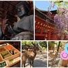 GWの思い出 〜奈良旅行〜