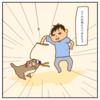激しく遊ぶ猫と哀れなおもちゃ