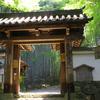 京都 地蔵院 緑溢れる竹の寺