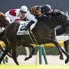 タコイチの《今週の狙い馬》3頭目!