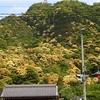 岐阜県観光大使の季節情報~穴場スポットも公開か?~