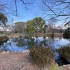 日だまりの池(大阪府吹田)