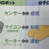 自律的に動く分子ロボットは夢じゃない!東京工業大学情報工学系・生命理工学系・システム制御系瀧ノ上研究室!