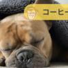「コーヒーを飲むと睡眠にどう影響?」高校生が研究発表