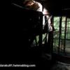 <ネットすげえええ!!>八幡市廃墟「一家心中の家」と呼ばれる家の真相を知った話