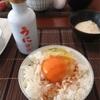 贅沢な逸品「うに醤油」で卵かけご飯♪
