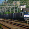 7月15日撮影 東海道線 二宮~大磯間 貨物列車その他もろもろ④