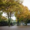 雨の神代植物公園と LZOS MC Jupiter-9 85mm F2 と・・・・・・