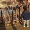 【3歳】発達グレーの息子が病院を勧められてしまった話