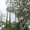 フィリピン留学【バギオのカフェ巡り】gossip coffe