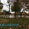 【石狩市】紅葉山公園【広々駐車場】池にカモと鯉・紅葉がきれい♪
