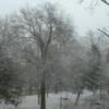 1999年12月のアイオワ