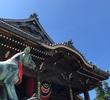 商売繁盛のパワースポット「豊川稲荷」で金運アップ願い旅 <愛知県・豊川市>