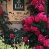 横浜イングリッシュガーデン  癒しの穴場と本屋さん