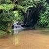 【SNS】濃溝の滝じゃないよ、農溝だよ。正確には、亀岩の洞窟だよ。