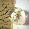 クラフト:レジン 蜘蛛と薔薇 Spider & Roses