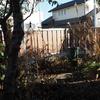【ブログ休止中の振り返り】イチゴの不作と12月の庭仕事