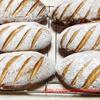 米粉入りクッペとセミハードロール・コッペ形のパン2種