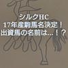 シルクホースクラブ17年産駒馬名決定!出資馬の名前は…