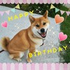 2歳の誕生日を迎えました♪