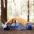 価格は54.99ドル。Amazonベーシックの4人用テント。