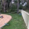 【South Coast】WWOOF21日目。フェンスの掃除が終わりました。