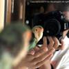『鳥の撮り方』村東 剛 製作中