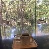 【Connel Coffee(コーネルコーヒー)/青山一丁目】意外な場所にある緑が見渡せる癒しのカフェ