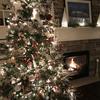 これぞ、本物のクリスマスツリー!