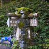 涸沢・奥穂高岳に行くことにしました。【 14 明神から徳沢まで】