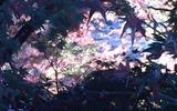 香嵐渓の紅葉の写真