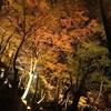 【今週末が見ごろ!?】愛知で紅葉見るならココ「香嵐渓(こうらんけい)」