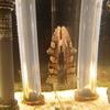 2017/11/30 きょうのナマズ展