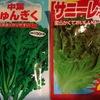 秋植え付けの野菜・・・アブラナ科とキク科の野菜混植で害虫予防