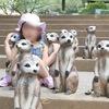 2019年6月 子連れ台湾旅記録2日目・新竹『六福村主題遊樂園』前編。