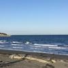 散歩スポット…見物海岸