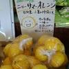 ニューサマーオレンジとデカレモンと、【現実に患者の当面の欲求に過不足なく対応する距離でなければならない。】