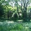 福岡県行橋市で松山神社参拝!自然が豊かすぎるので足首まで隠した服装で!!