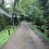 【京都旅行】静かで美しい庭園揃いの大原の寺院をめぐる