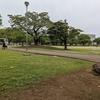 街かど探検隊 宮崎県総合文化公園で世にも奇妙な人びとに遭遇