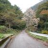 大鷲谷(大鷲山817m)朝日町
