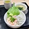 千葉駅 魚力朝メニュー 山芋ネギトロしらす小鉢