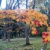 弘前公園植物園 1