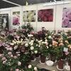 バラの無農薬栽培と有機栽培について久しぶりに書いてみます。